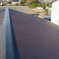 既存の屋根より、軽量に、強固に、リフォームしました。のメイン画像です