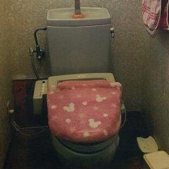 高性能でお掃除しやすく、清潔感のあるトイレに。のサムネイル画像1