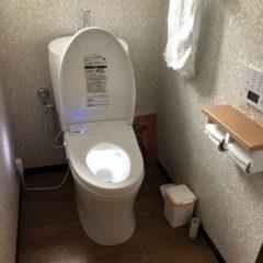 高性能でお掃除しやすく、清潔感のあるトイレに。のサムネイル画像2