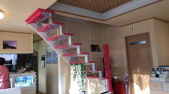 ニッチとカラフルな階段が素敵です。のアフター画像
